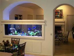 Aquarium Room Divider Scca Coral Reef Photo Gallery