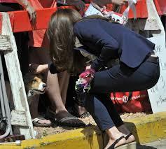 The Queen S Corgi The Queen Is Ditching Her Corgis A Lament Canada Com
