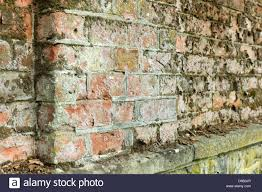 Cement Mix For Pointing Patio by Cement Pointing Stock Photos U0026 Cement Pointing Stock Images Alamy