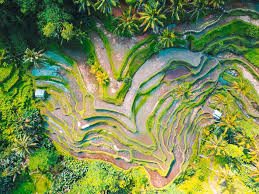beautiful places 6 beautiful places in bali you really must visit
