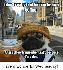 Meme Wednesday - idonjtreallyteel human before coffee parik after coffee iremember
