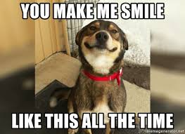 You Make Me Smile Meme - you make me smile like this all the time big smiledog meme generator