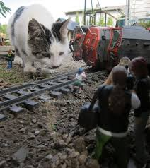 21 best g scale images on model trains garden