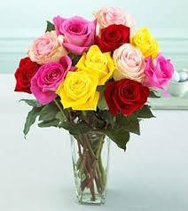 colored roses 1 dozen medium stem mixed colored roses with vase f152