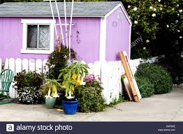 small purple house with potted plants in front of a white picket