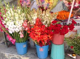 decoration flowers santosh flower decoration photos gomti nagar lucknow pictures