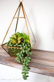 terrarium table decorating how to build a cactus terrarium terrarium ideas