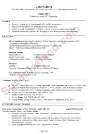 internship resume exles resume exle for mft internship susan ireland resumes