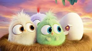 wallpaper with birds 18 the angry birds movie hd wallpapers background images
