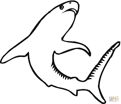tiger shark 4 coloring page free printable coloring pages