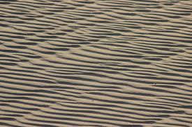 Heated Laminate Floors Free Images Nature Sand Wood Texture Arid Desert Floor
