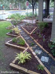 austin texas native plants make a fall resolution to get growing central texas gardener