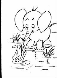 remarkable realistic animal coloring pages with animal color pages