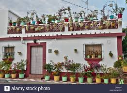 spanish village house with lots of plants in pots outside and on