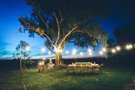 Fairy Lights In Trees by Festoon Lighting Uk U0027s Biggest Supplier Of Festoon Lighting
