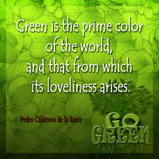 Eco Friendly Upholstery Go Green True Green Carpet Solutions Eco Friendly Carpet