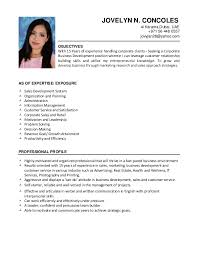 Ballet Resume Sample by Jovelyn Concoles Cv For Business Development And Marketing 2