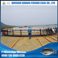floating fish cage for tilapia floating fish cage for tilapia