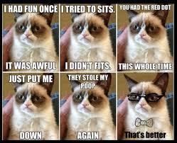 Grumpy Cat Meme I Had Fun Once - grumpy cat meme i had fun once cat best of the funny meme