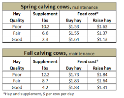 jan 2014 winter feed cost budget for beef cows ag in focus
