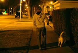 light for walking at night led light caps for dog walking at night lightheaded reviews