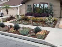 drought tolerant landscaping orange county ca drought resistant