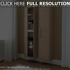 great tall storage cabinet with doors tall storage cabinet kitchen