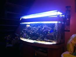 aquarium lights for sale fish tank led lights for sale on ebay fooru me