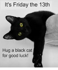 Good Luck Cat Meme - it s friday the 13th hug a black cat for good luck it s friday