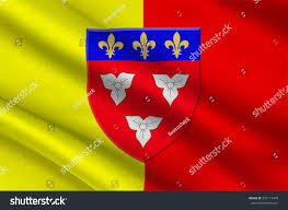 Flag Capital Flag Orleans City Northcentral France Capital Stock Illustration