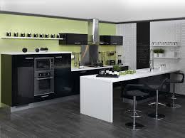 cuisine mur vert pomme cuisine vert anis et gris avec photo cuisine mur vert galerie et