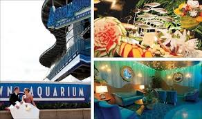 wedding reception venues denver downtown aquarium venue denver co weddingwire
