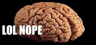 si e des motions dans le cerveau 5 raisons de ne pas faire confiance à cerveau