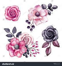 watercolor illustration pink flowers black leaves stock