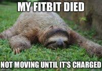 Sloth Whisper Meme - coolest sloth fitness meme 33 funny whisper sloth meme will make