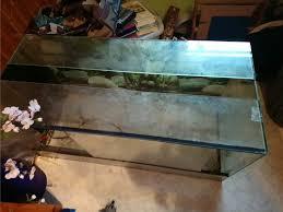 australian shepherd zu verschenken terrarium osb und glas zu verschenken guggenberg terrarien ab