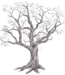 scary dead tree sketches sketch coloring page