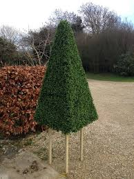 14 best artificial topiary trees and plants images on