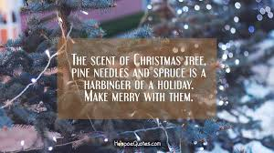 the scent of tree pine needles and spruce is a