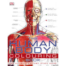 the human body colouring book the ultimate anatomy guide early