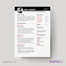 Job Resume Format In Ms Word by Professional Resume Template U2013 Simple Resume Templates For
