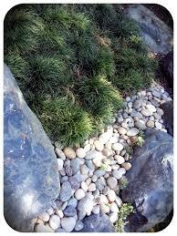 Rock Garden Cground 211 Best Rock Gardens Images On Pinterest Garden Gardening