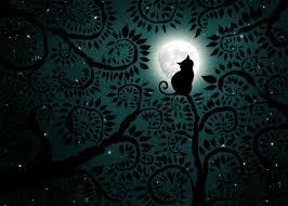 moon cat ii by supernaturall on deviantart