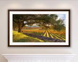 Napa Valley Home Decor California Wine Country Wine Valley Print Napa Valley Fall