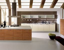 kitchen kitchen cabinets white transparent factory direct