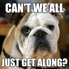 Can T We All Just Get Along Meme - can t we all just get along unhappy bulldog quickmeme