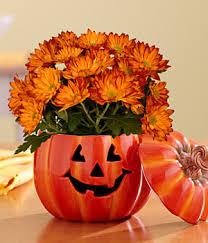 pumpkin patch halloween bouquet from pro flowers just 24 99