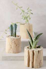 9 ideas for including tree stumps in your home decor contemporist