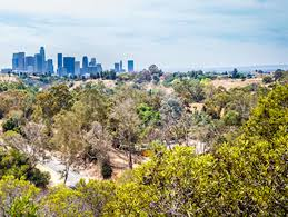 where to run in los angeles l a u0027s top 10 running paths