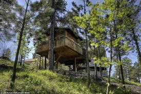 hobbit tree house rental in black south dakota wows lord of